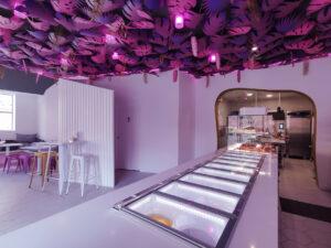 gelatica diseño 2